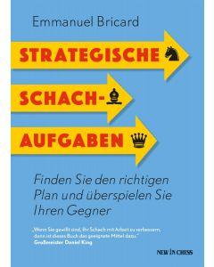 Strategische Schachaufgaben: Finden Sie den richtigen Plan und überspielen Sie Ihren Gegner