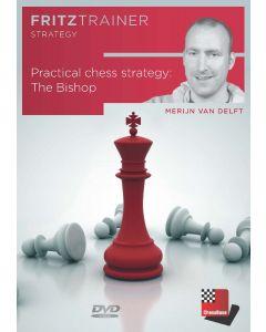 Merijn van Delft: Practical chess strategy: The Bishop: FritzTrainer Strategy