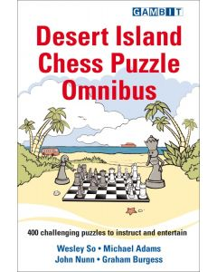 Desert Island Chess Puzzle Omnibus: 400 Challinging Puzzles to Instruct and Entertain