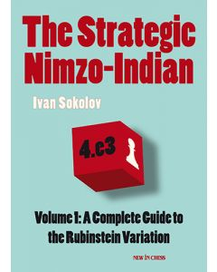 The Strategic Nimzo-Indian: A Complete Guide to the Rubinstein Variation