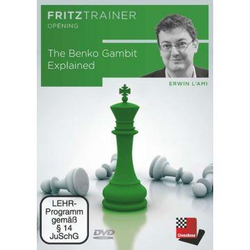 Erwin l'Ami: The Benko Gambit Explained