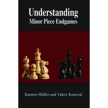 Understanding Minor Piece Endgames